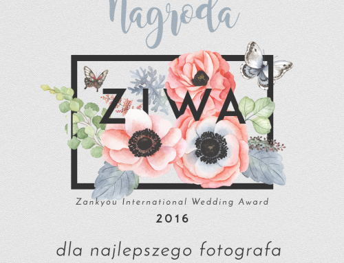 Zankyou International Awards 2016